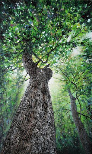 Le chêne de l'Entente Compiègne 162 x 97 cm
