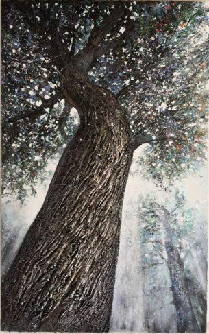 Chêne des Beaux-Monts 130 x 81 cm- Compiègne